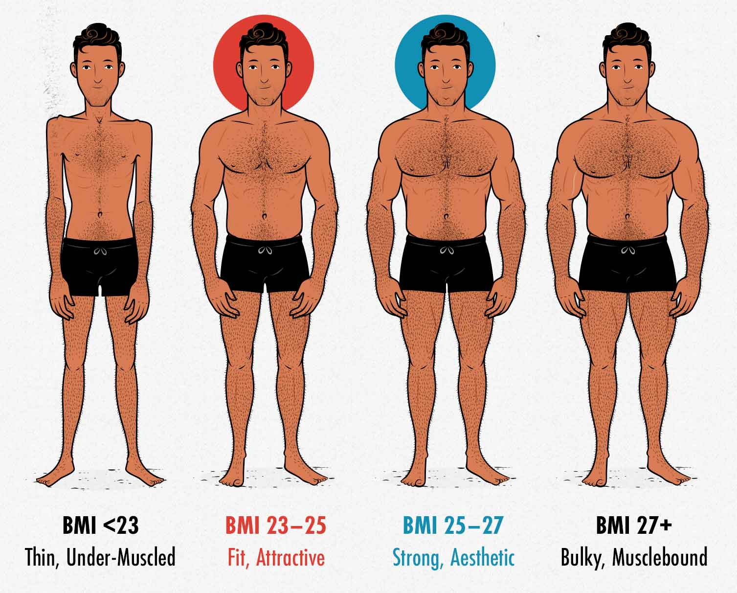 Diagram showing the most attractive and aesthetic male body weights and BMIs.