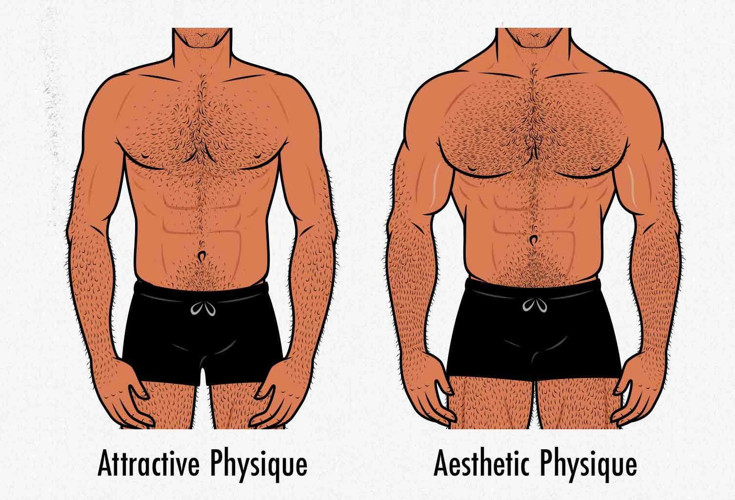 Illustration showing the differences between a male body that's attractive to women versus a body that looks ideal to men.