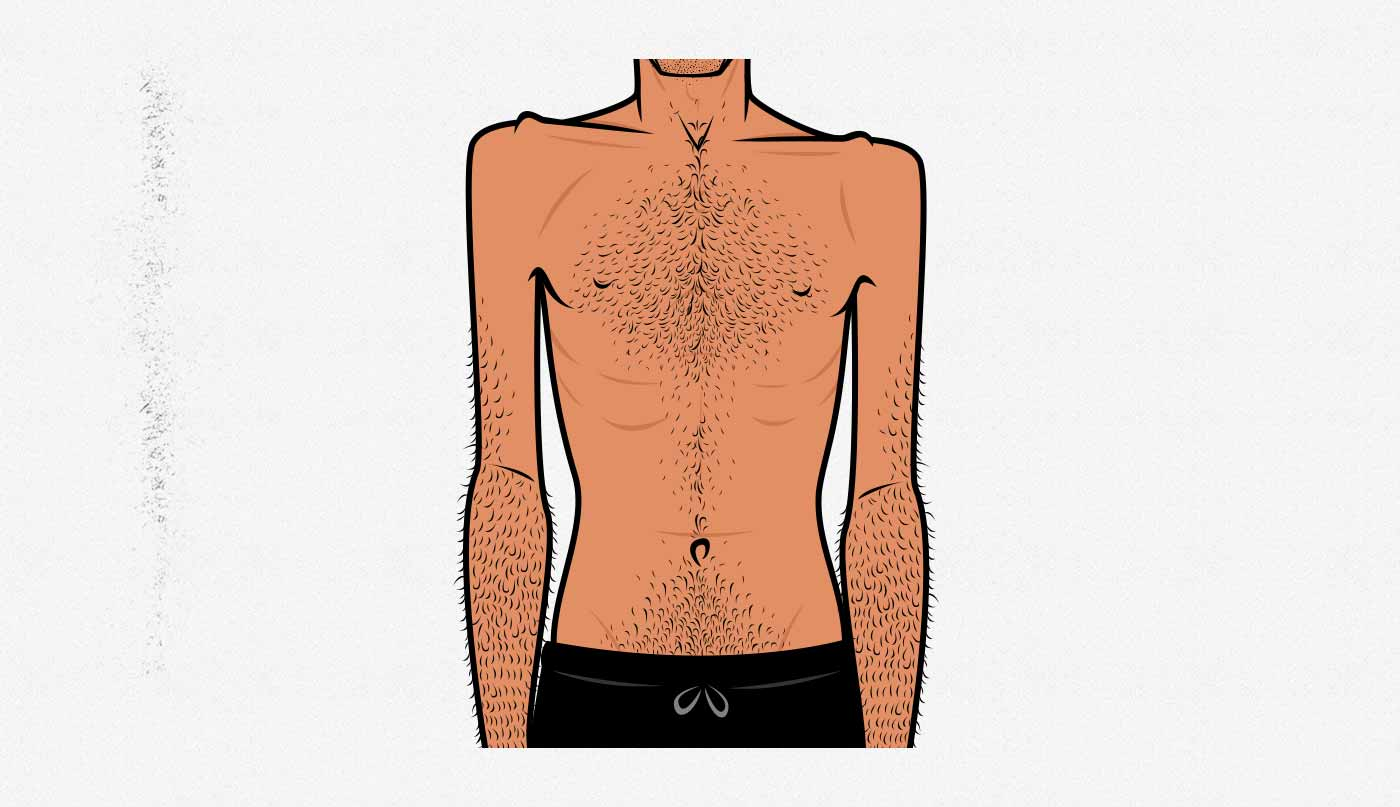 Illustration of the skinny ectomorph hardgainer body type.
