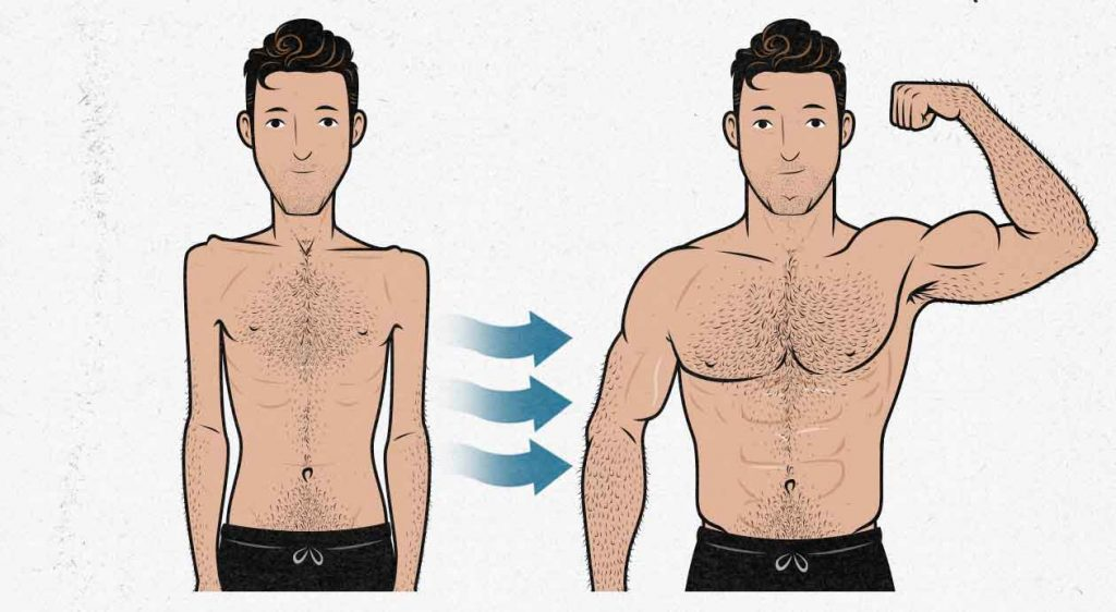 Illustration of a skinny guy bulking up and becoming muscular