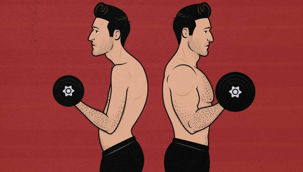 Illustration of a skinny and a muscular ectomorph doing biceps curls