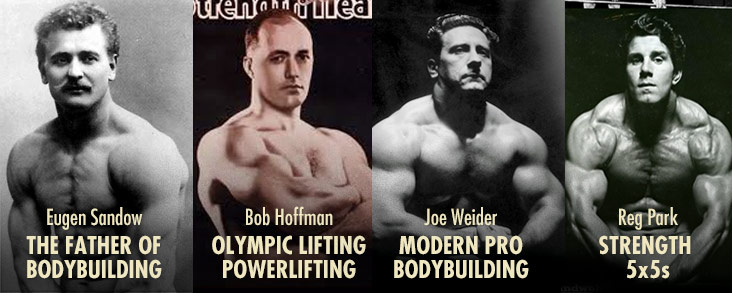 Muscle-building programs for skinny guys – bodybuilding vs strength training