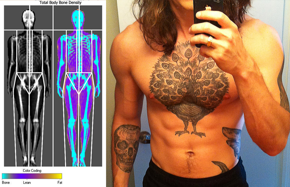 Bony to Beastly Shane Duquette Body Fat Percentage DEXA Scan
