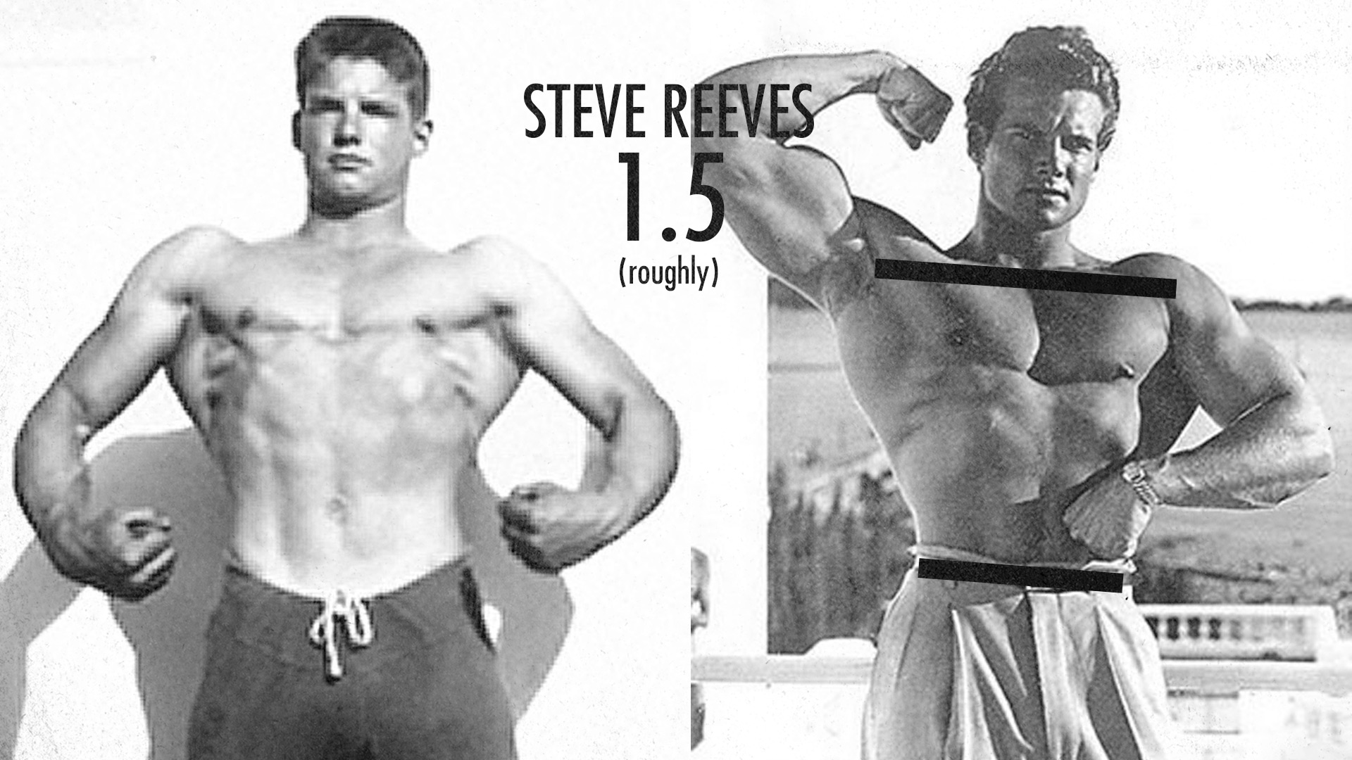 Muscle-Building Genetics, Bone Structure V-Taper, Steve Reeves
