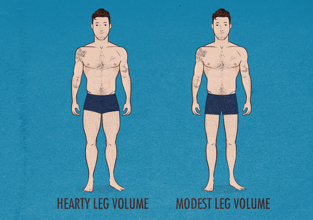 Hearty vs Modest Leg Volume