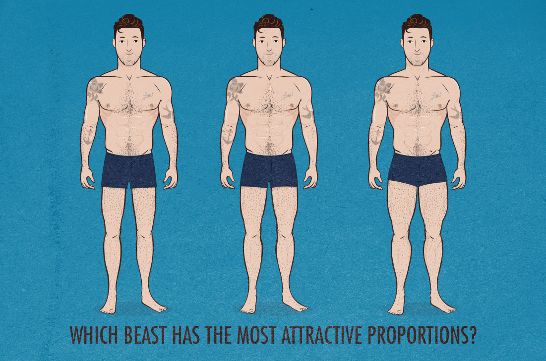What are the Most Attractive Proportions?