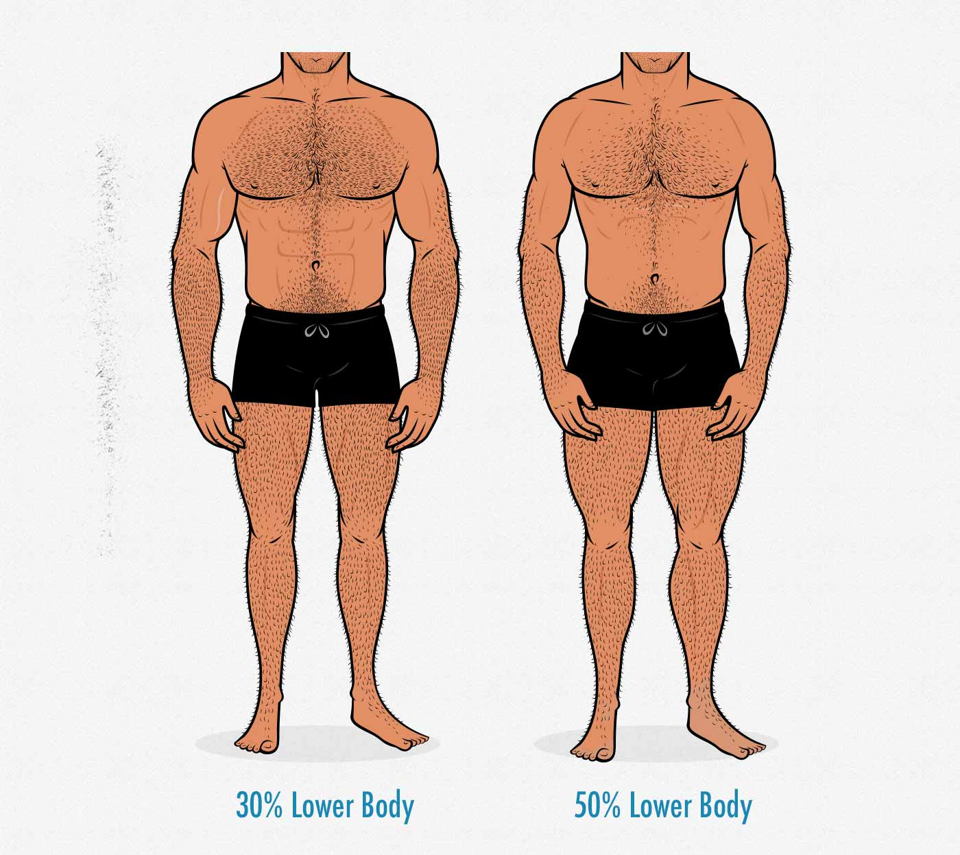 Illustration of two men with different upper and lower body proportions