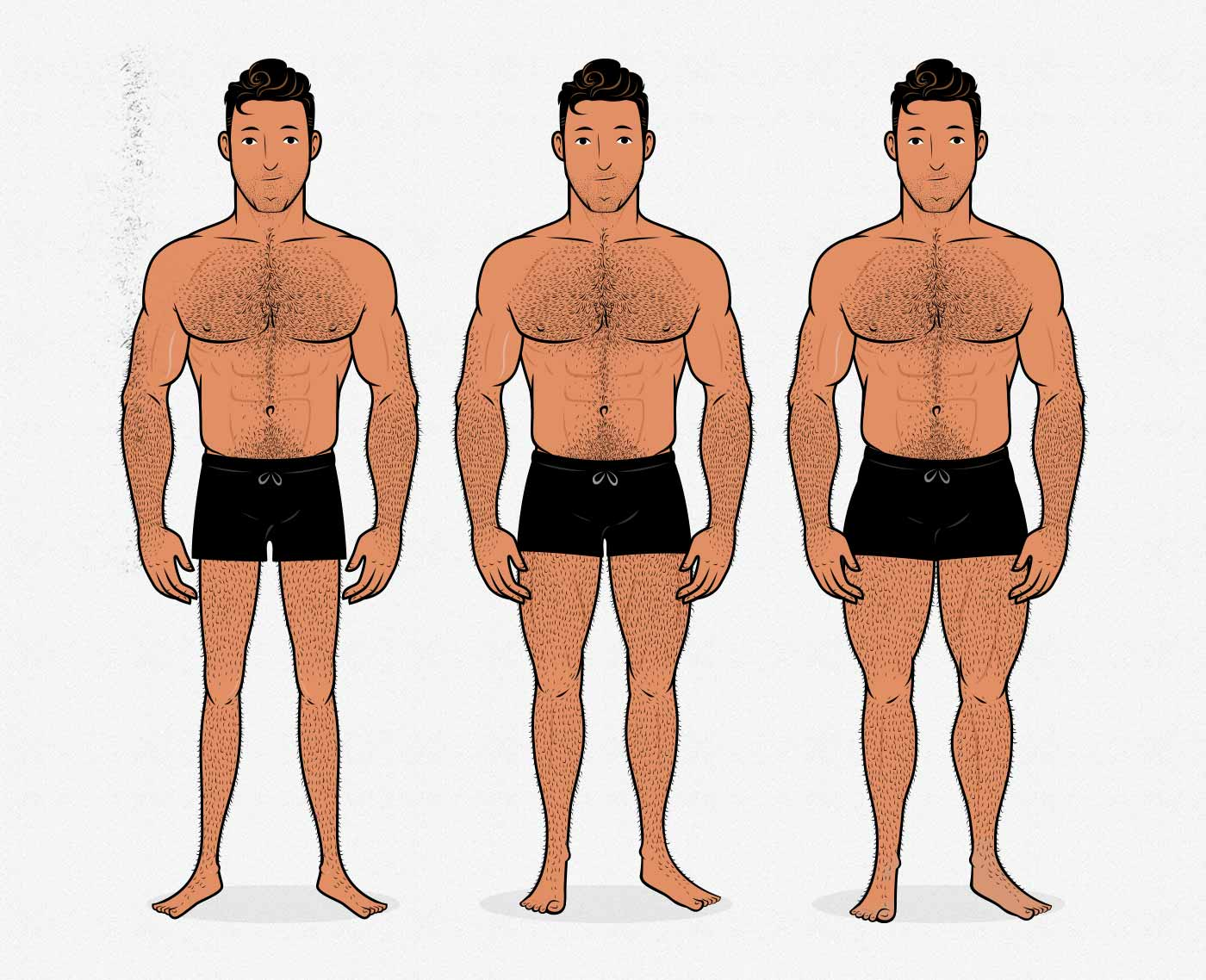 Illustration of men with different leg sizes and degrees of muscularity.