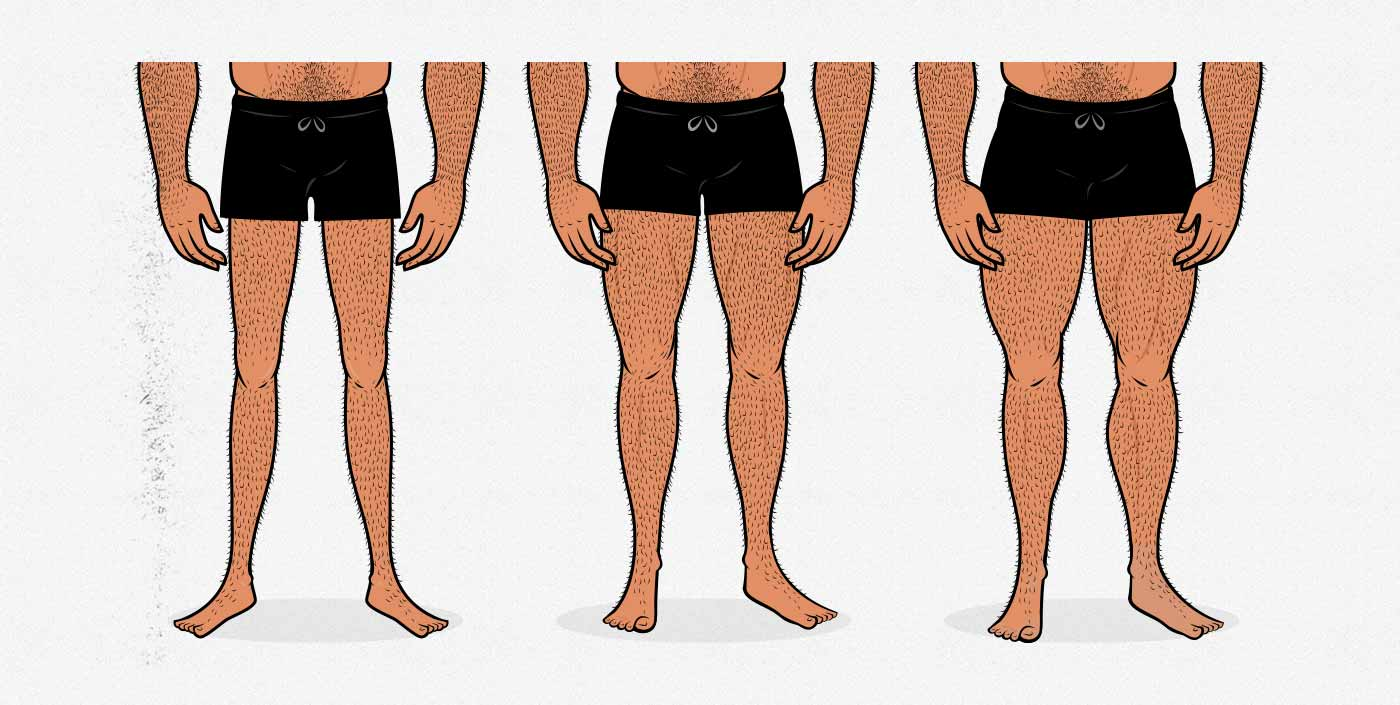 Illustration of men with different leg muscle sizes.