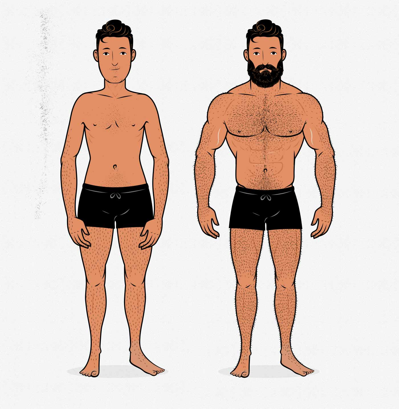 Illustration of a man with a feminine and a masculine body shape.