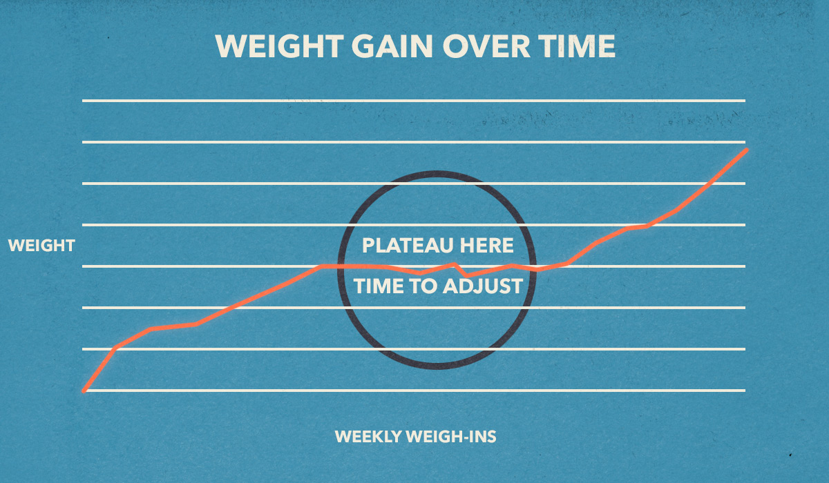 weight-gain-tracking-tools-how-to-plateau