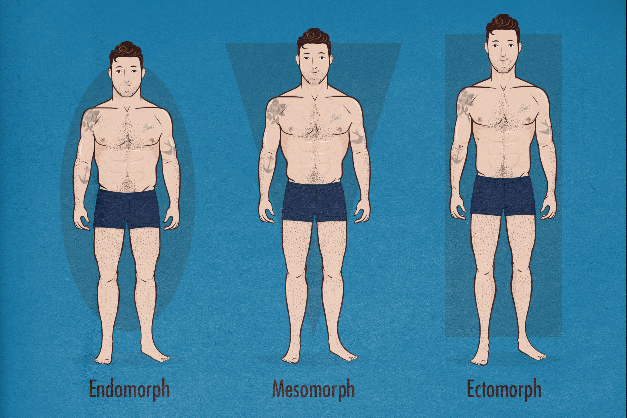Endomorphs, Mesomorphs and Ectomorphs can all become strong, healthy and attractive