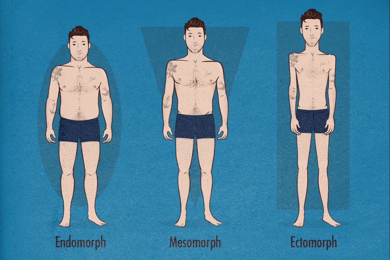 Image result for ectomorph body type