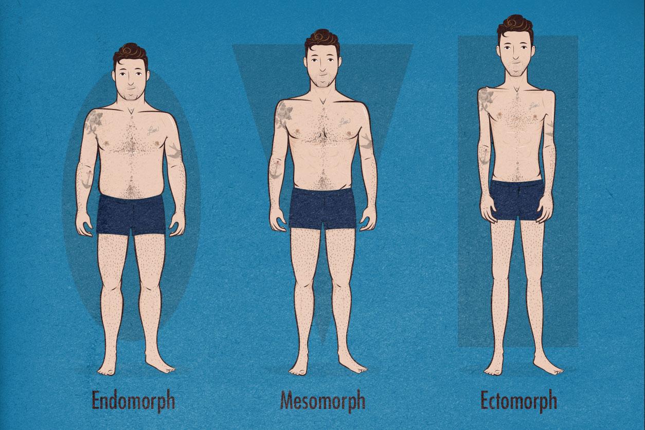 How to Tell If You're an Ectomorph, Mesomorph or Endomorph Body Type (Somatotypes)