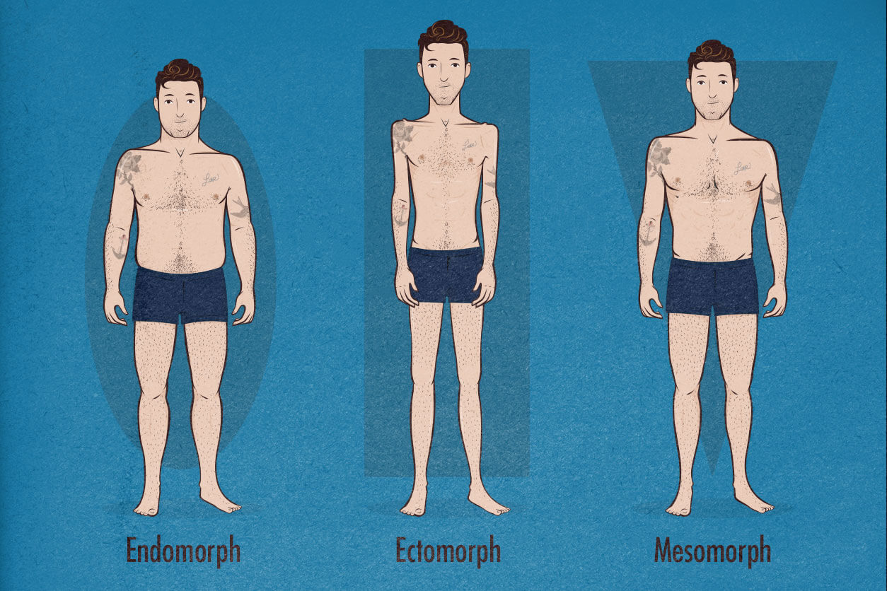 Wide Shoulders, Mesomorphs, Ectomorphs, and Endomorphs