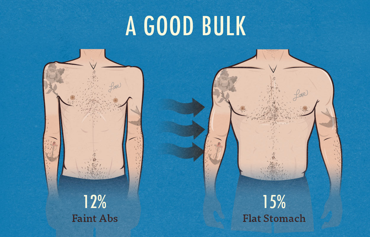 What different body fat percentages look like