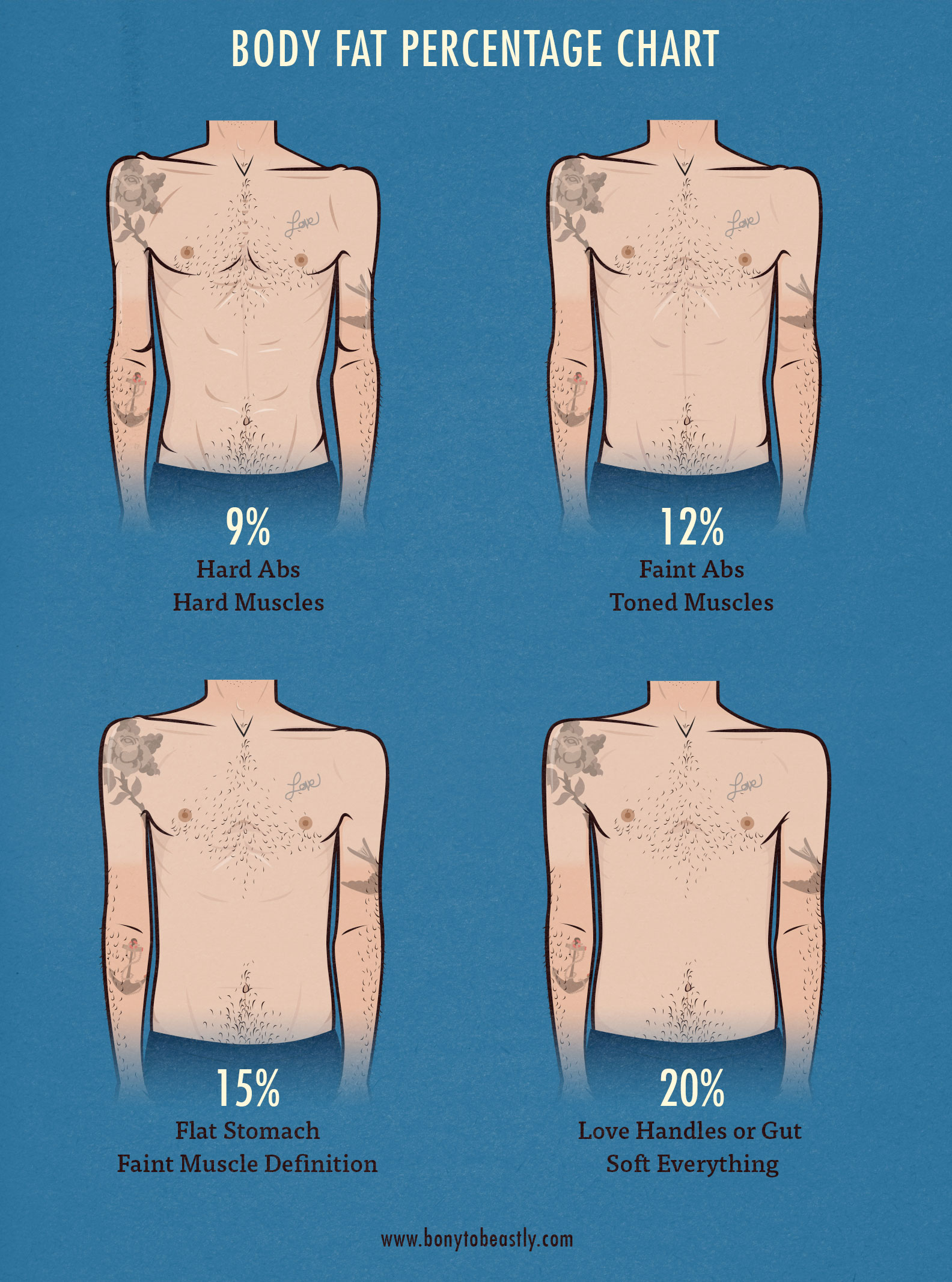 body fat percentage results