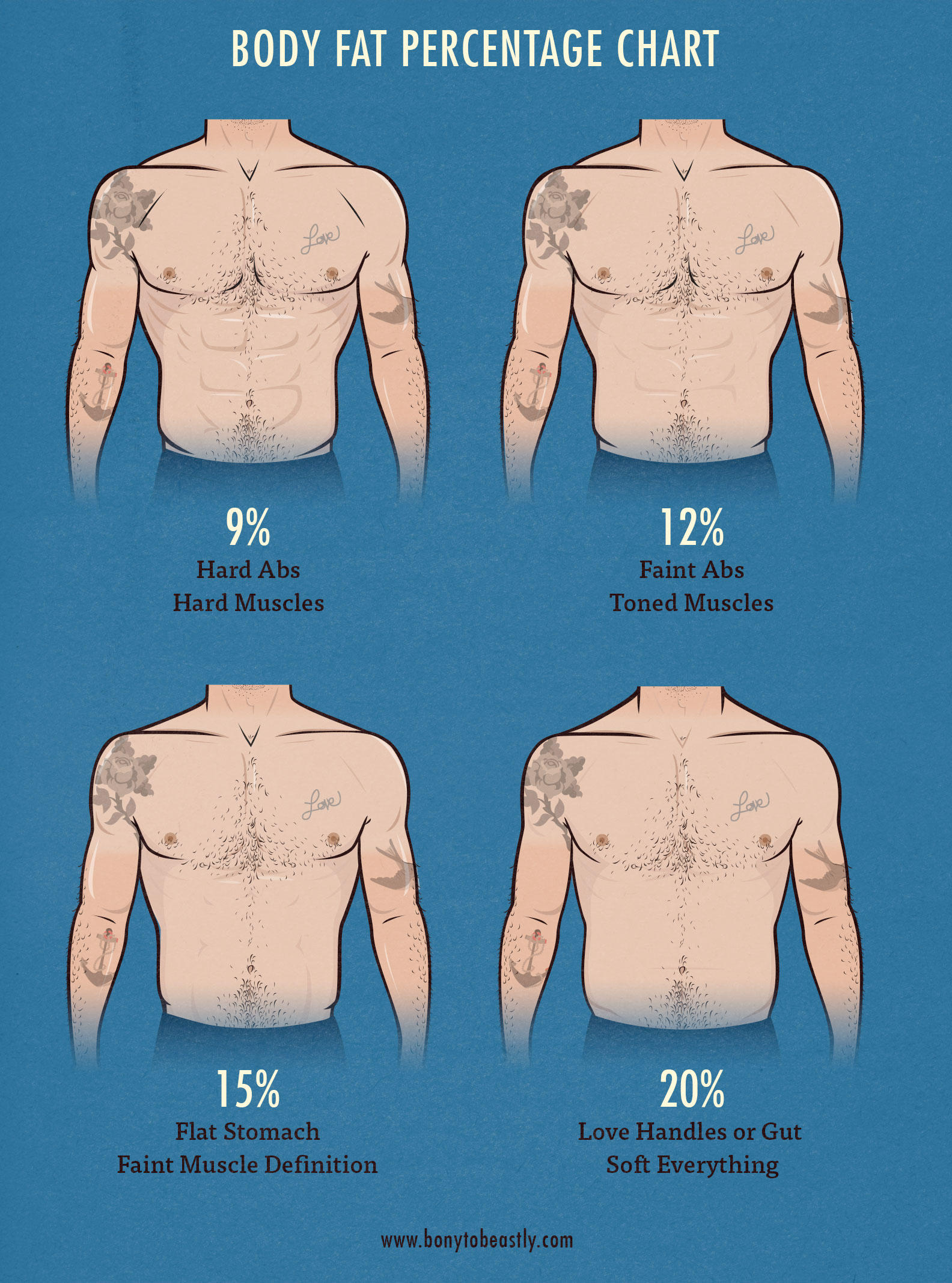 real life body fat percentage examples