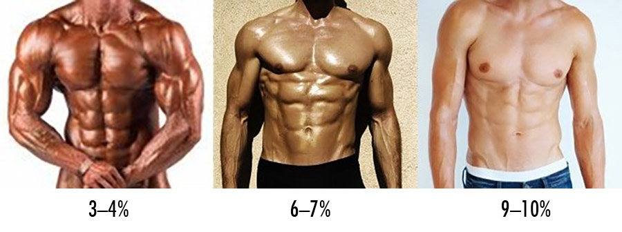 bony to beastly the ectomorphs guide to body fat percentage