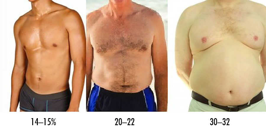 The Skinny Guy S Guide To Body Fat Percentage Bony To Beastly