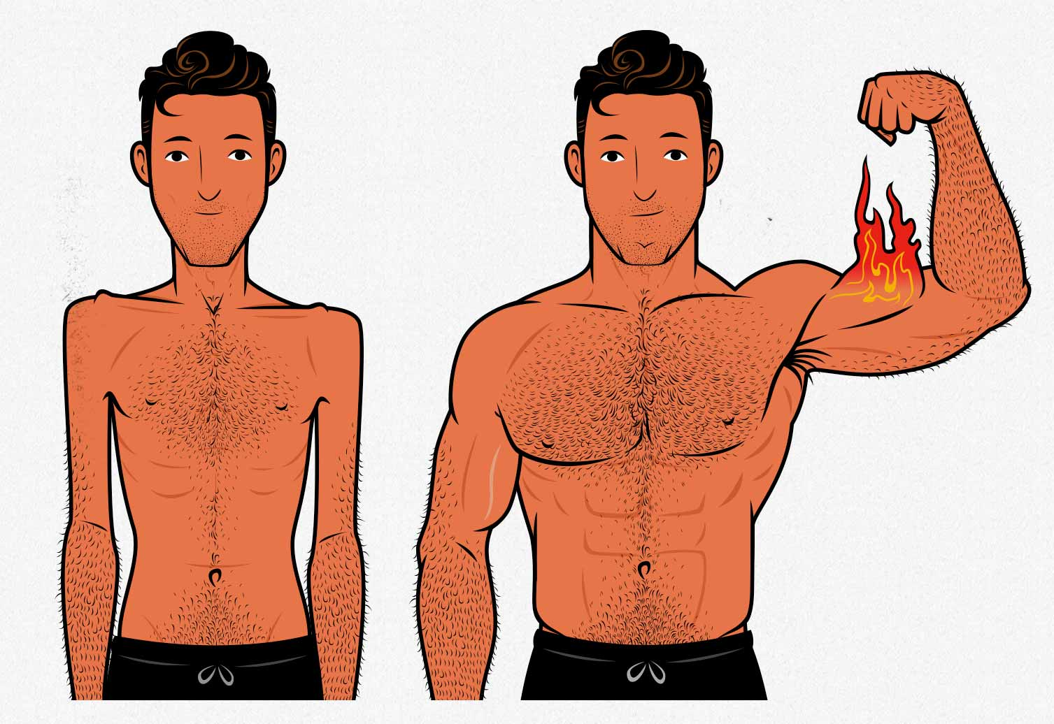 Illustration showing the before and after results of gaining muscle while intermittent fasting.