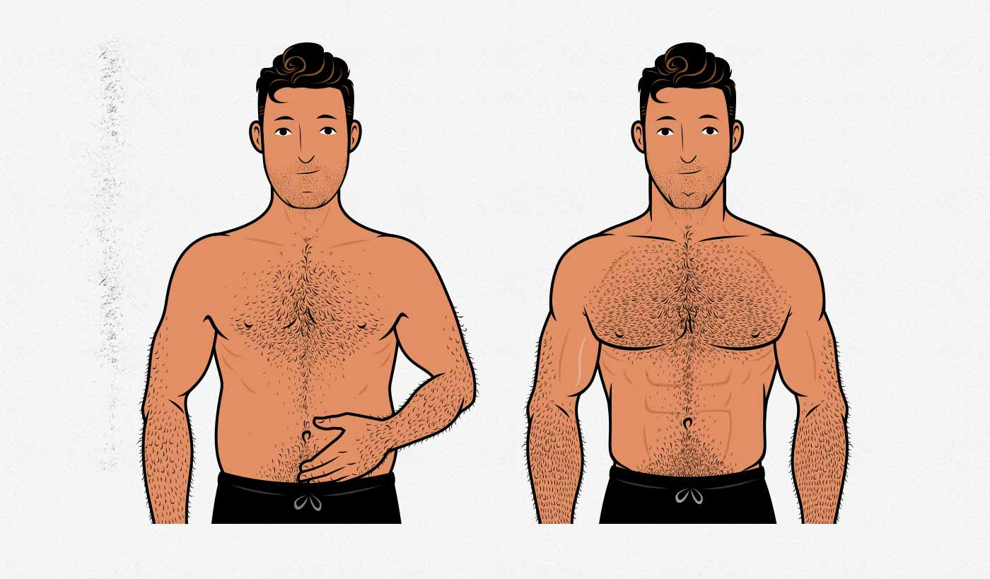 Illustration showing the results of using intermittent fasting to prevent fat gain while bulking.