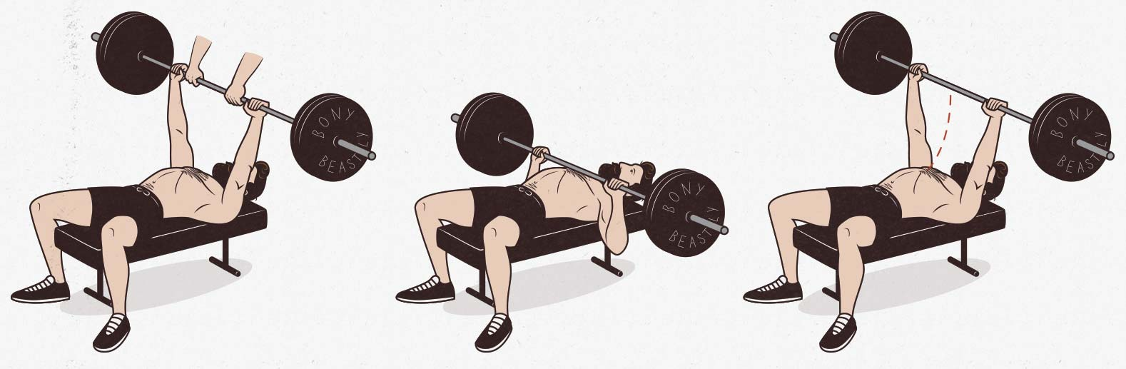 The flat barbell bench press chest exercise