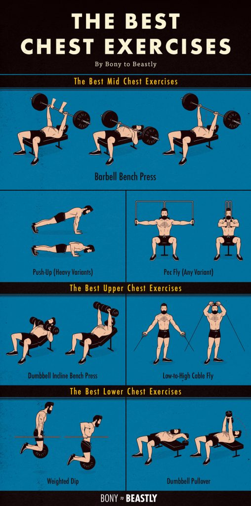 the best chest exercises chart  u2014 bony to beastly