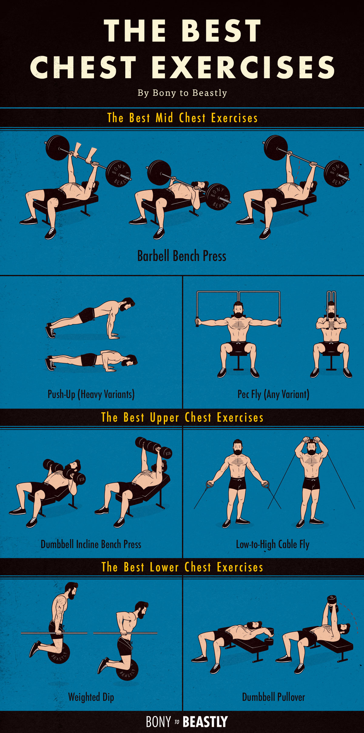 An illustrated chart of the best chest exercises