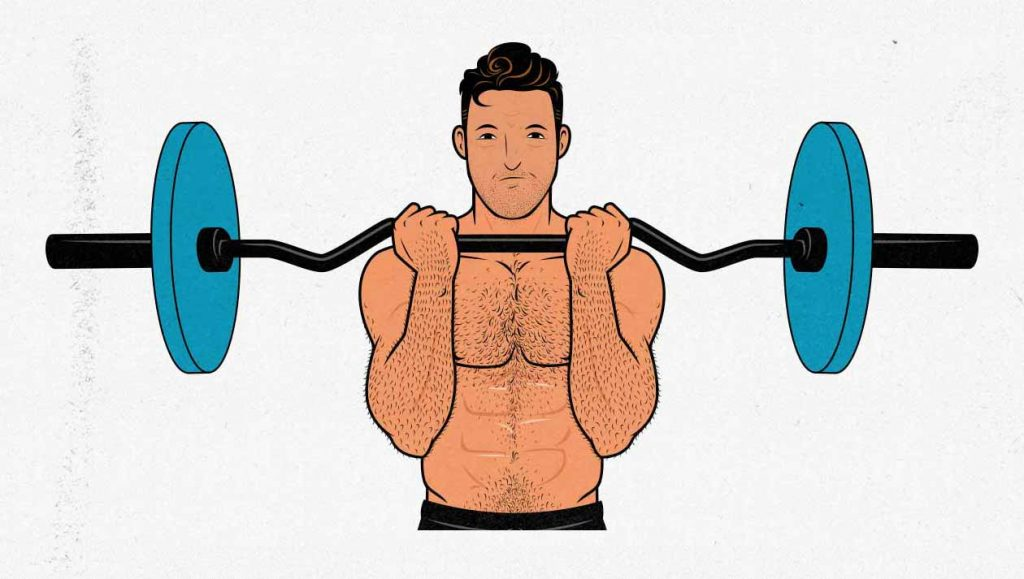 Illustration of a man doing a curl-bar biceps curl with an ez-bar barbell.