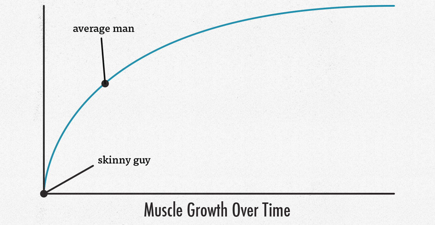 Illustration showing that skinny ectomorphs can build muscle more quickly than other body types.