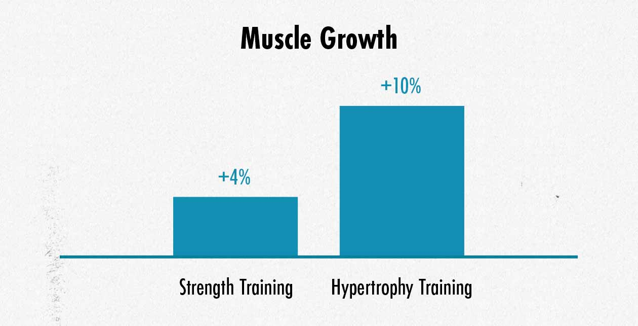 Graph showing varying rates of muscle growth.