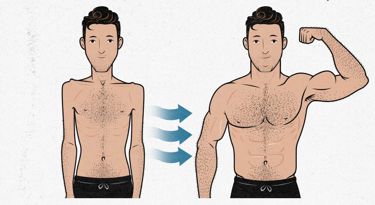 Illustration of a man going from skinny to muscular.