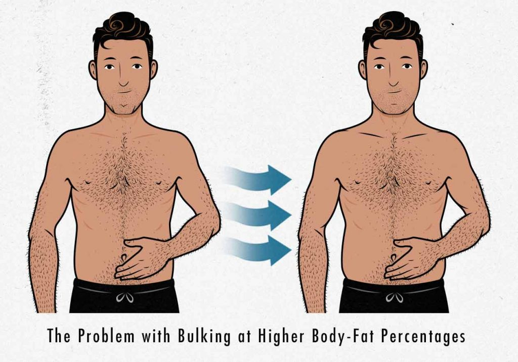 Illustration of a guy bulking at 15% and 20% body fat