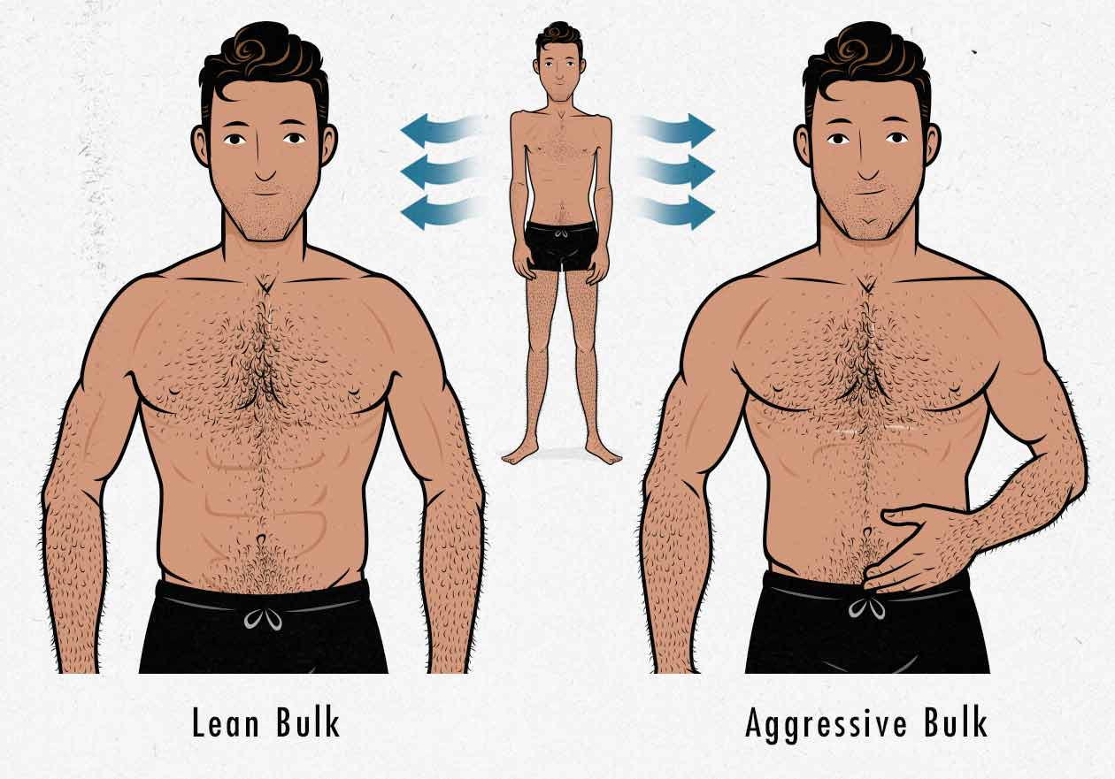 Illustration of lean gains vs bulking up fast.