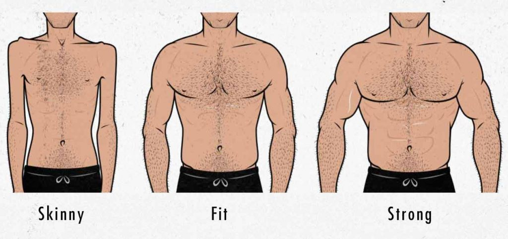 Illustration of skinny, fit, and strong male body types.