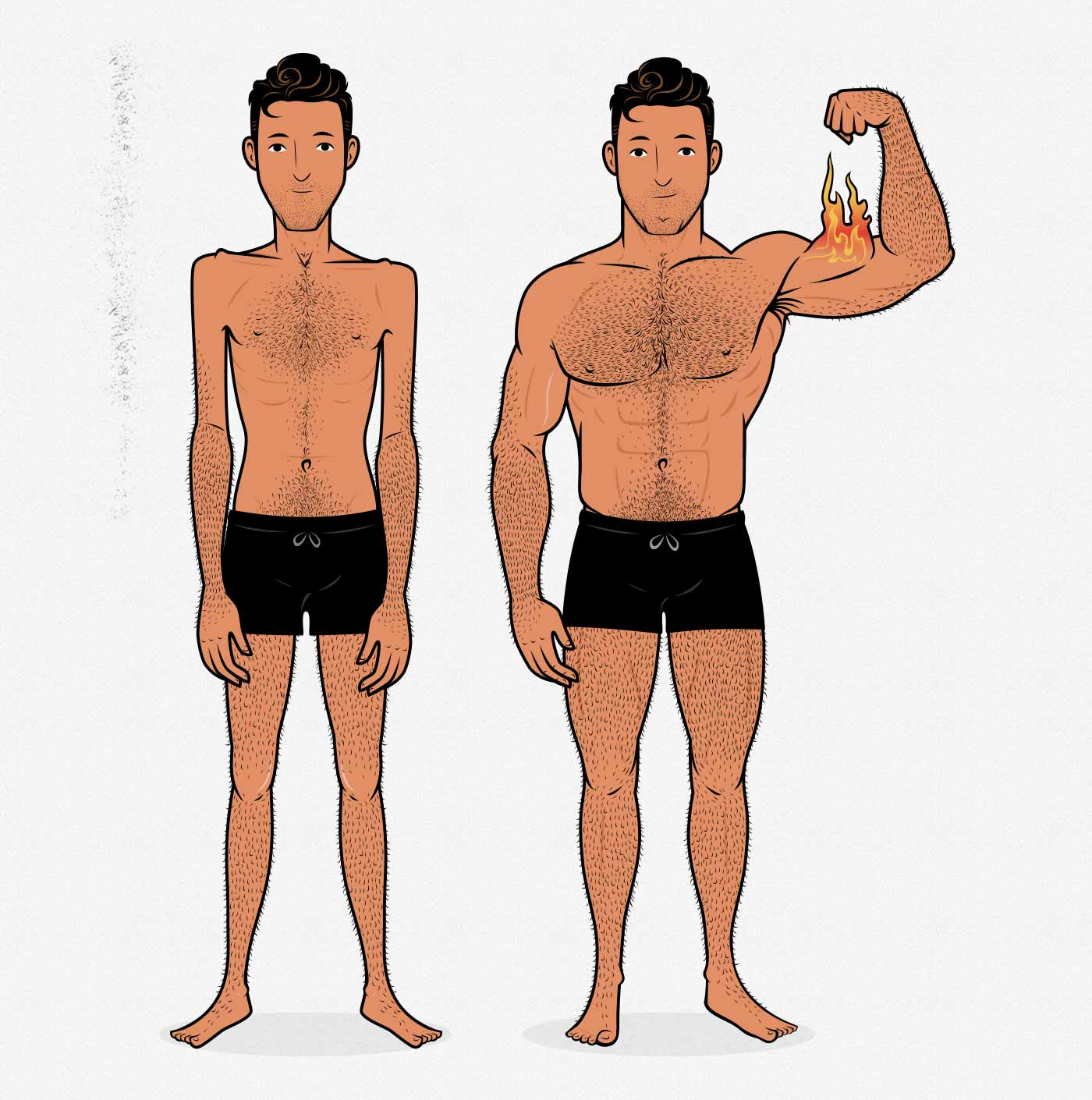 Illustration of a skinny guy building muscle and becoming muscular (before/after).