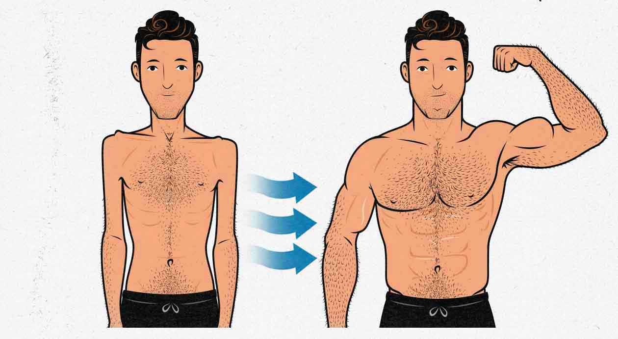 Illustration of a skinny guy bulking up and becoming muscular.