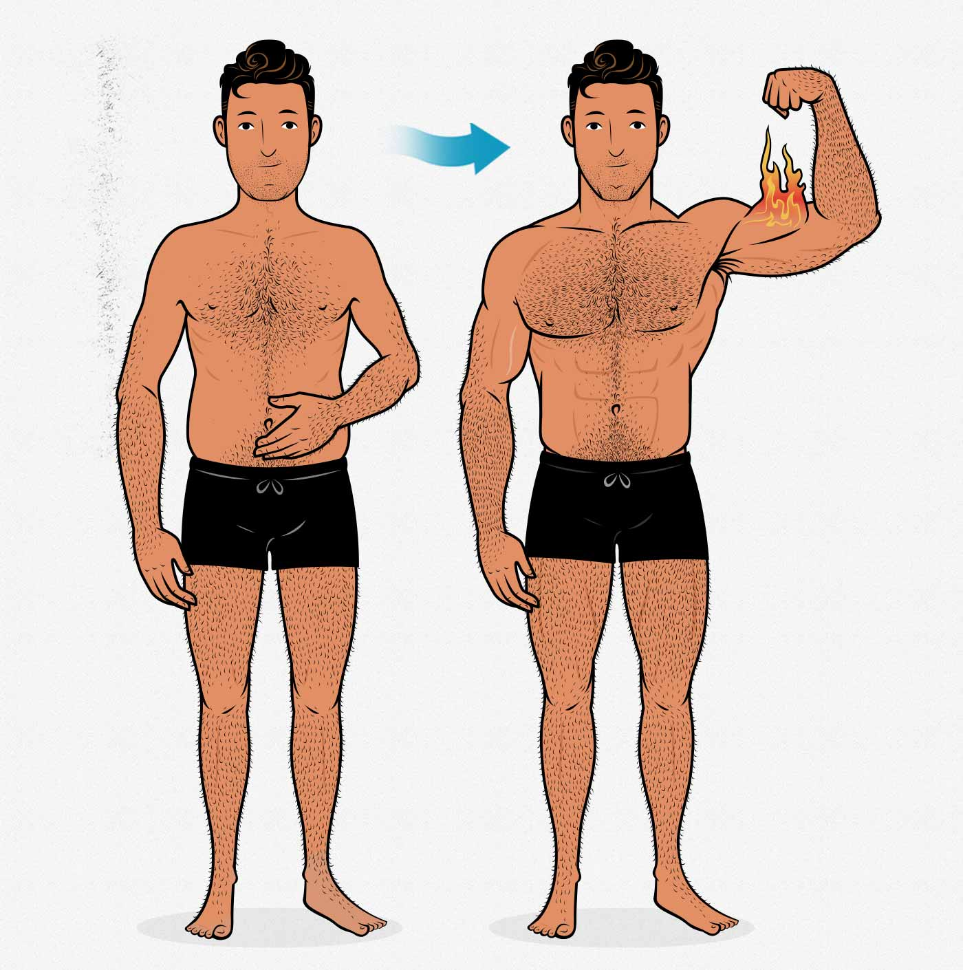 The Skinny Fat Guy S Guide To Bulking Cutting Bony To Beastly