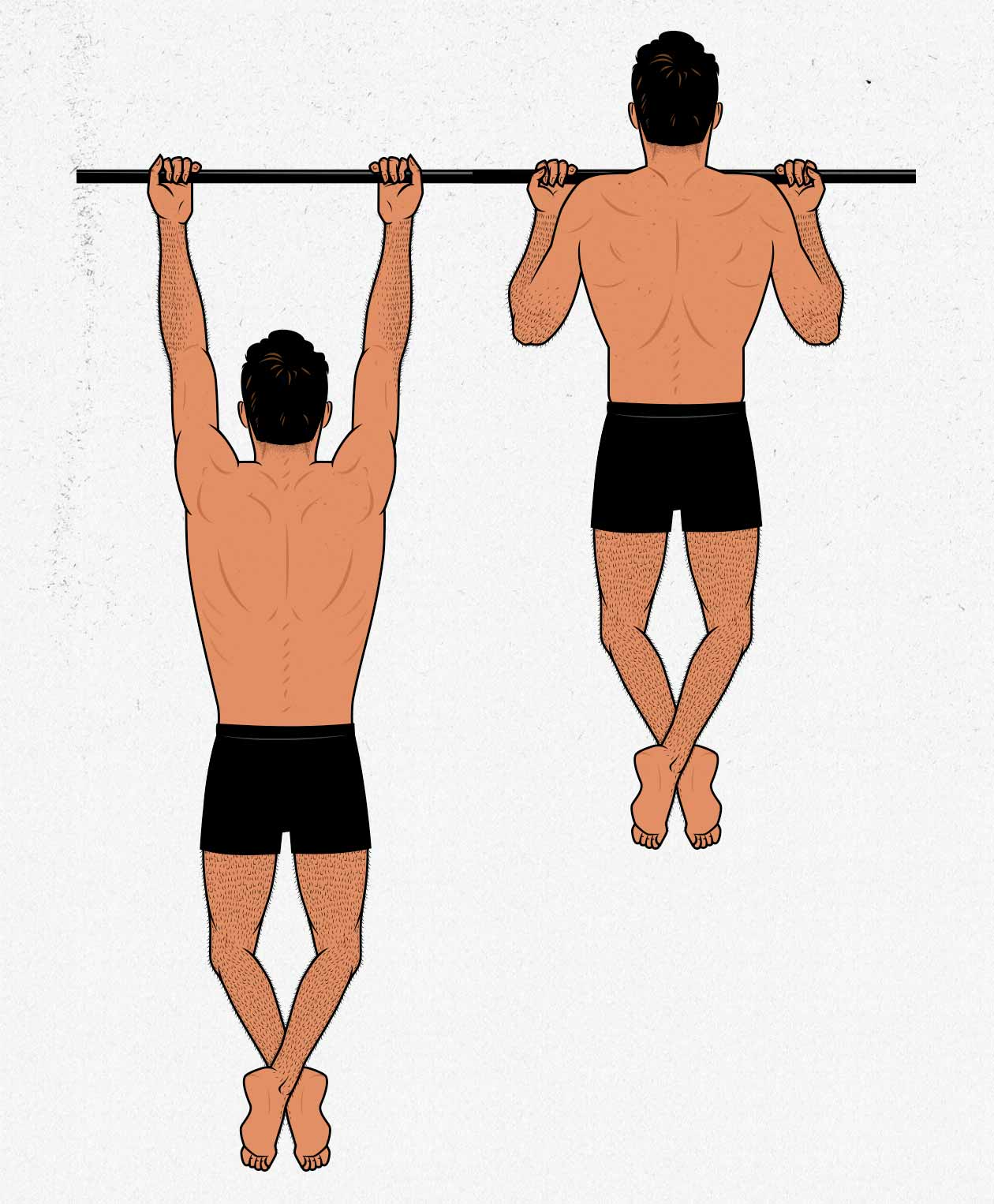 Illustration of a skinny ectomorph doing an underhand chin-up.