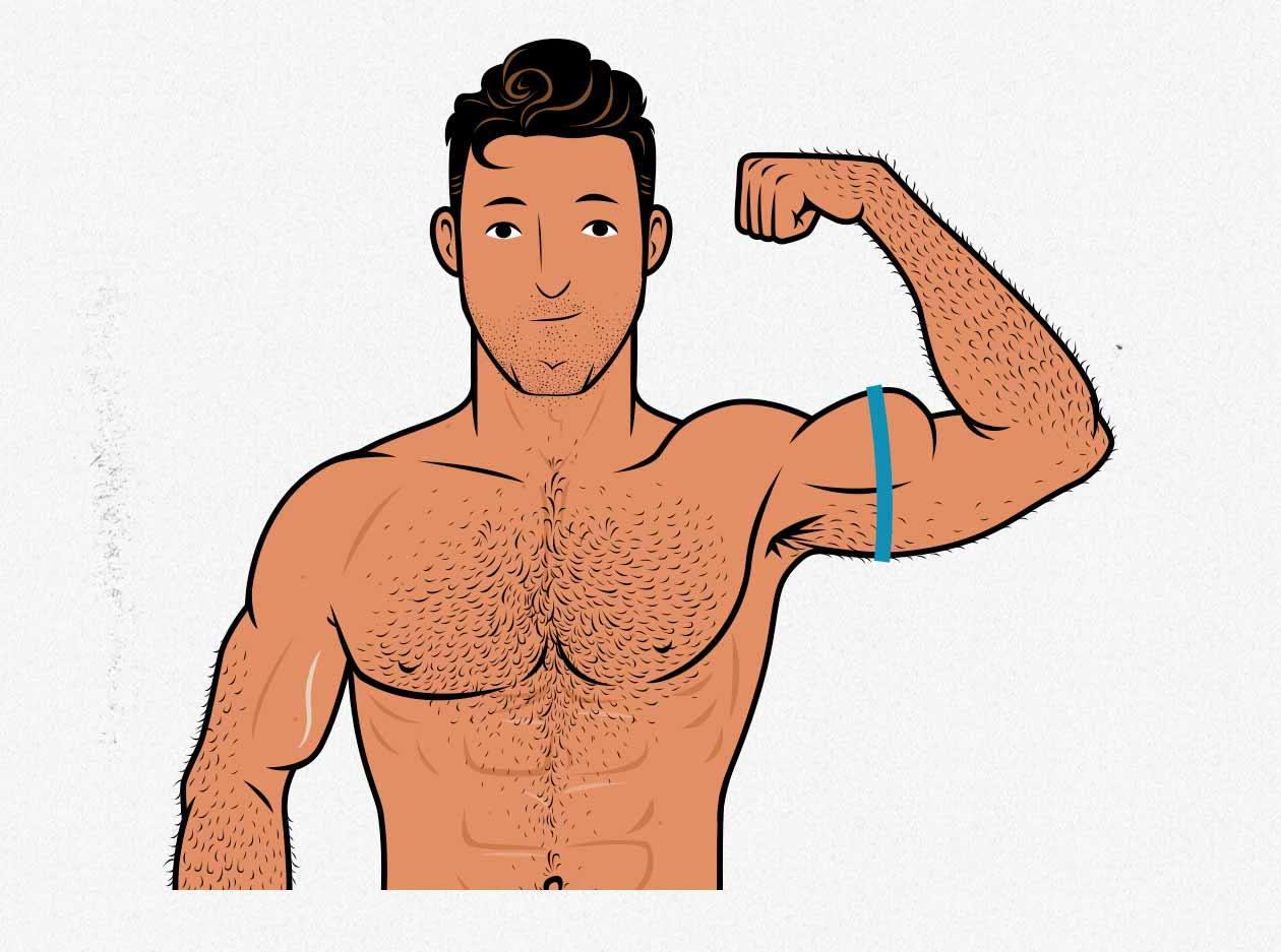 Illustration showing how to measure the size of your biceps.