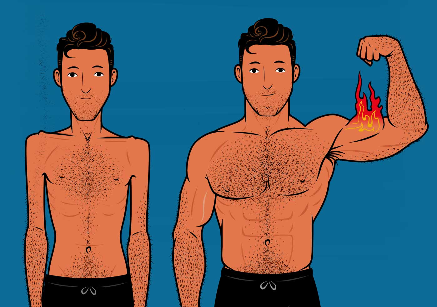 Illustration of a skinny ectomorph building muscle