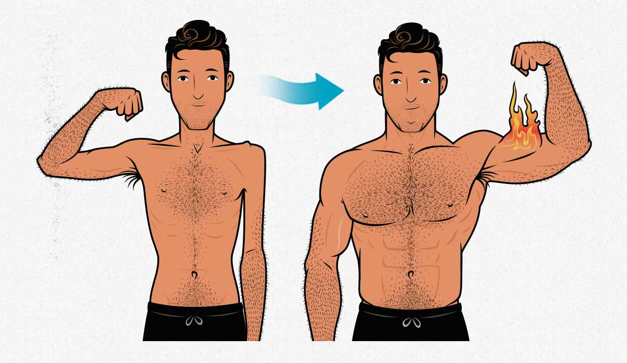 Illustration showing an ectomorph as he builds muscle, going from skinny to muscular.