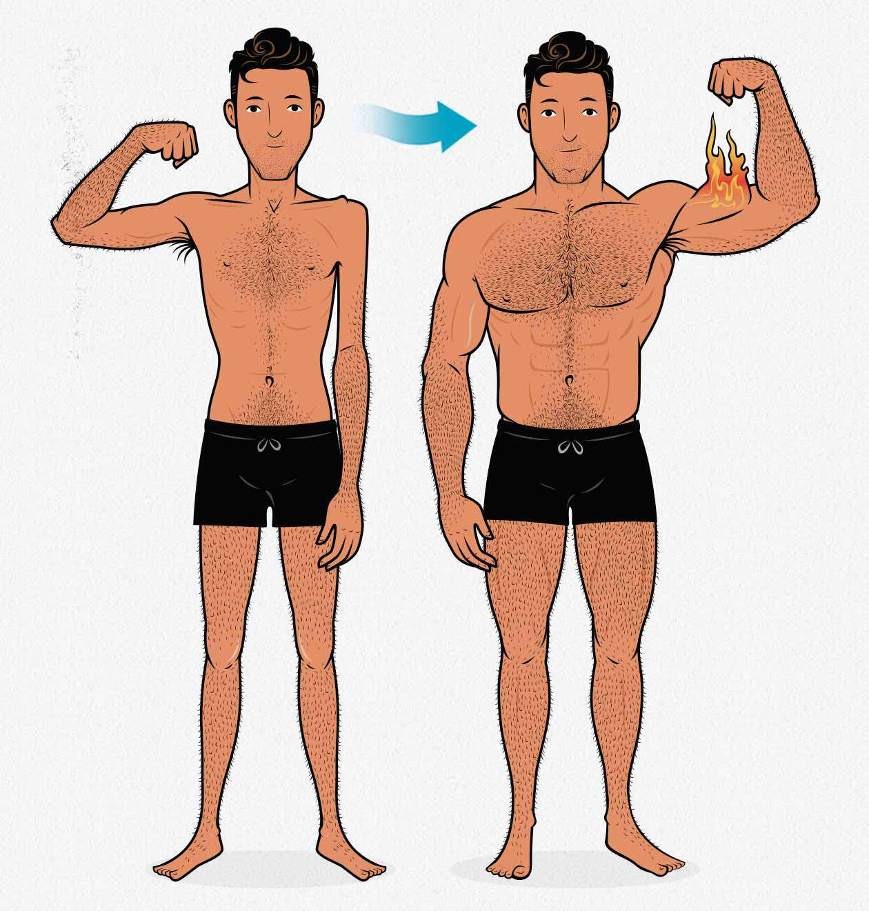 Before and after illustration of an ectomorph's progress as he gains muscle.