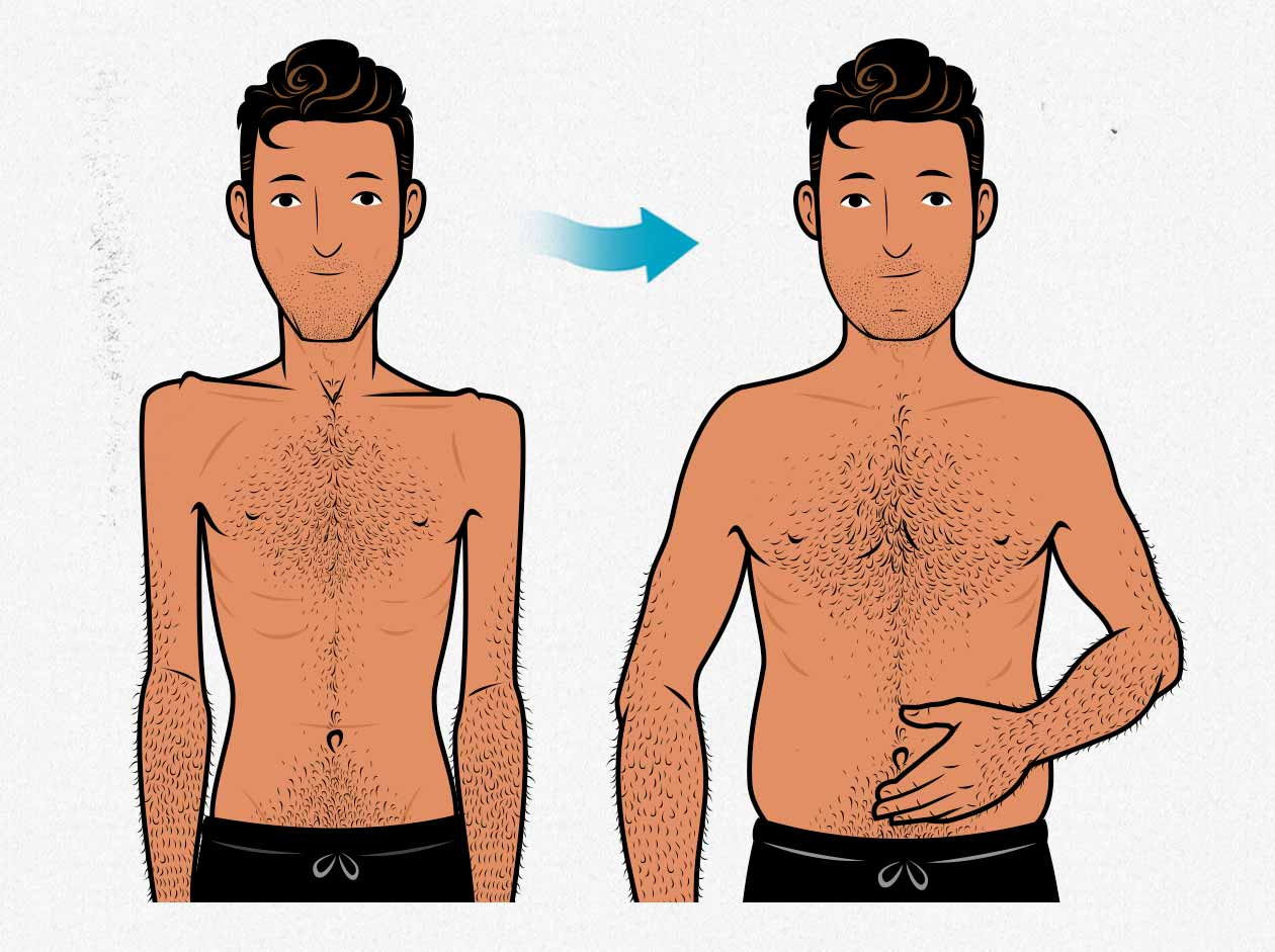 Illustration showing a skinny guy gaining fat from mass gainers.