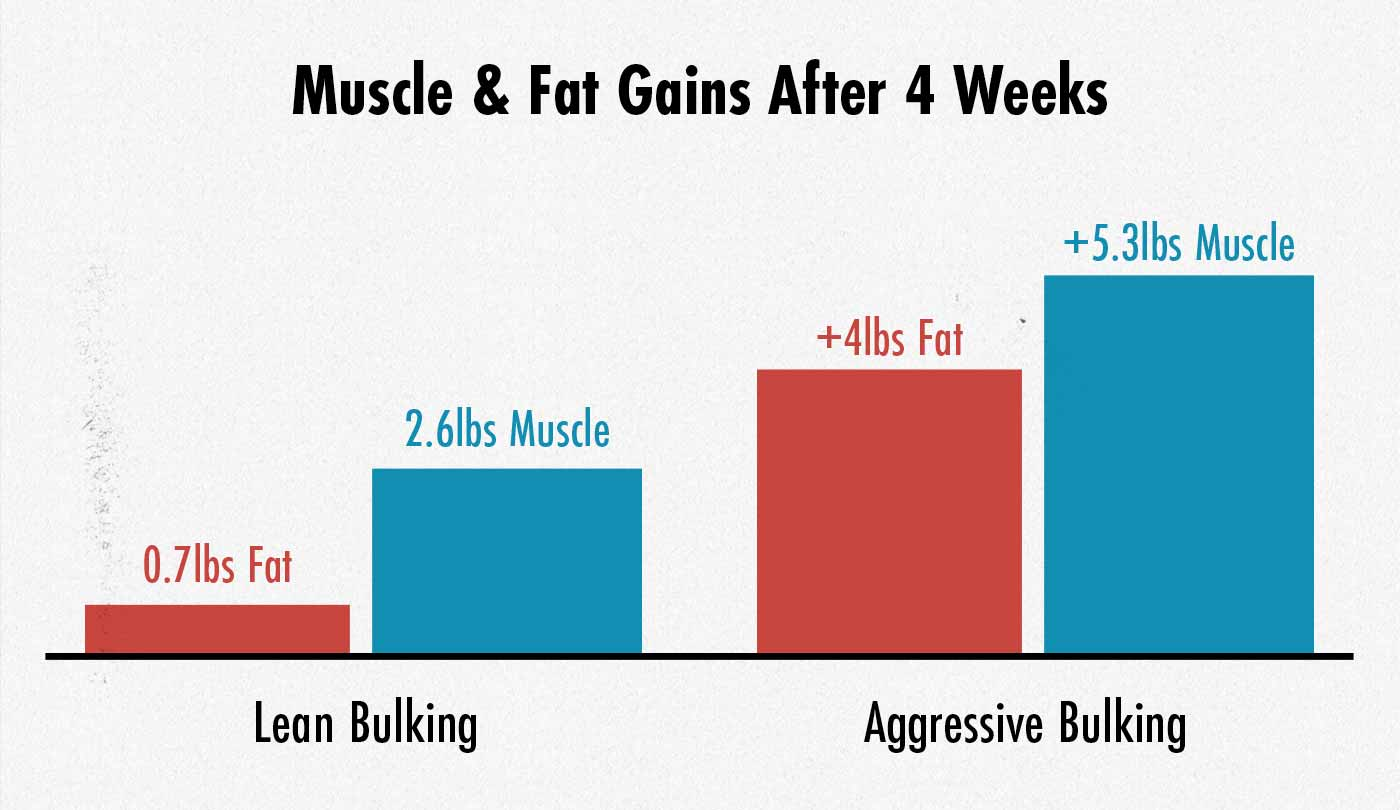 Diagram showing that lean bulking reduces fat gain at the cost of reducing muscle growth.