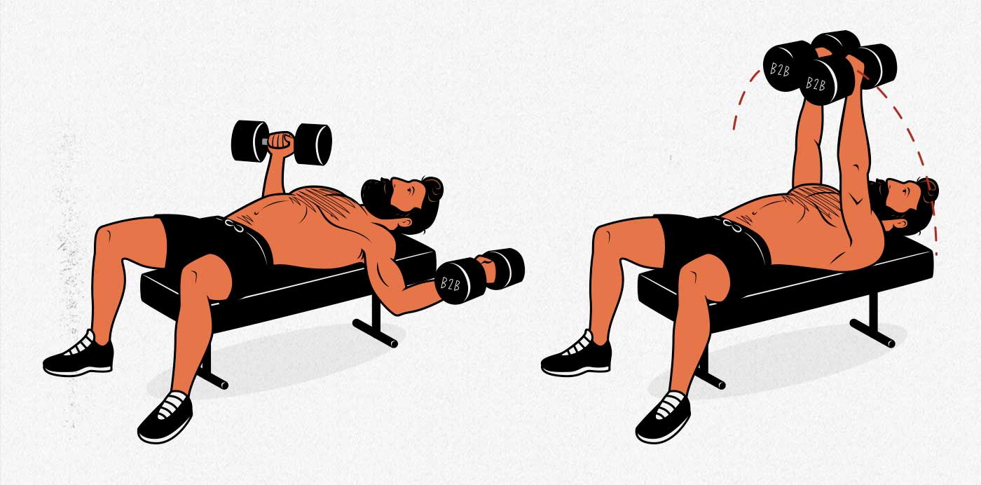 Illustration of a bodybuilder doing the dumbbell fly exercise to build a bigger chest.