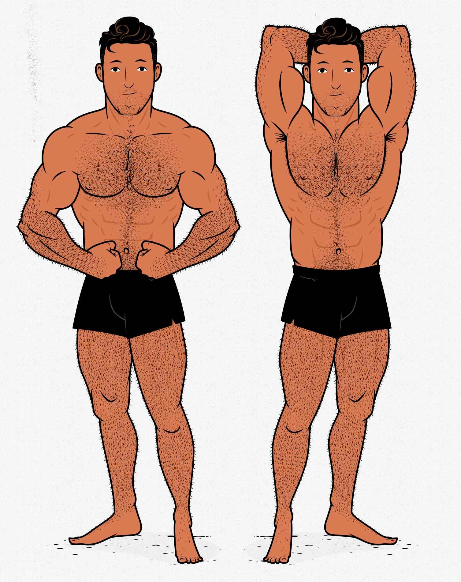 Illustration of the Bony to Beastly skinny bodybuilder flexing.