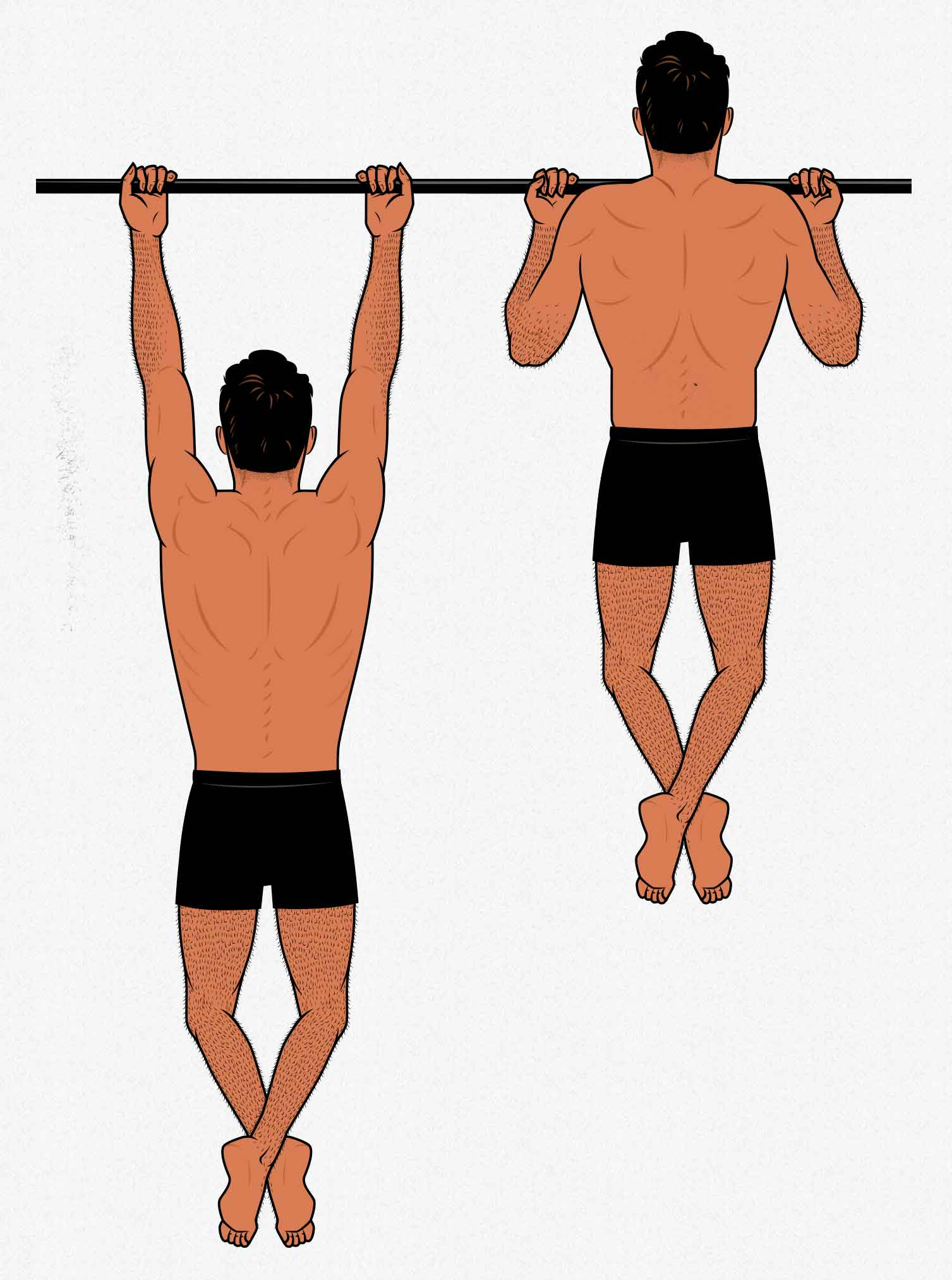 Illustration showing how to do chin-ups to build muscle in the upper back and biceps.