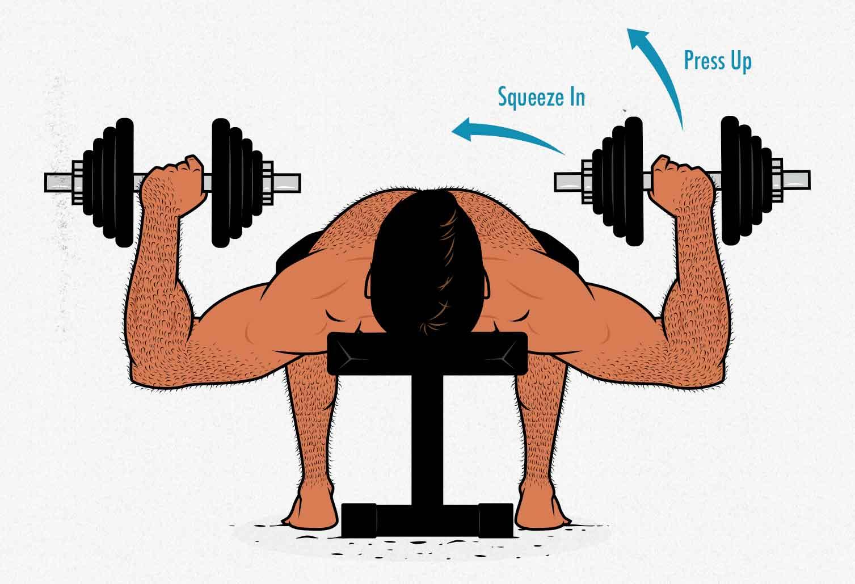 Illustration of a bodybuilder doing a dumbbell bench press.